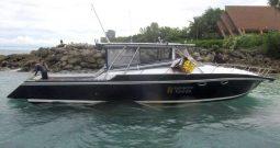 41′ Offshore Sportfishing boat